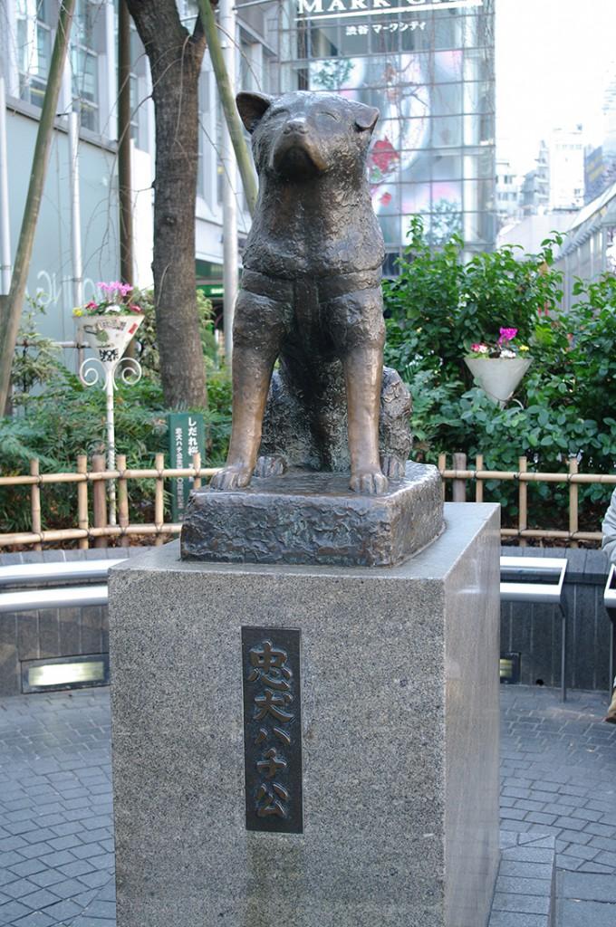 tokyo shibuya hachikou