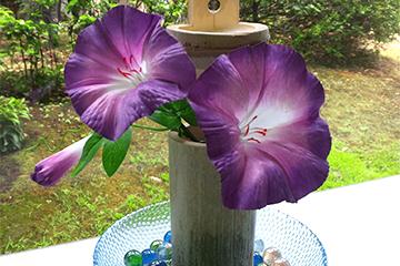 生け花体験、外国人、日本東京
